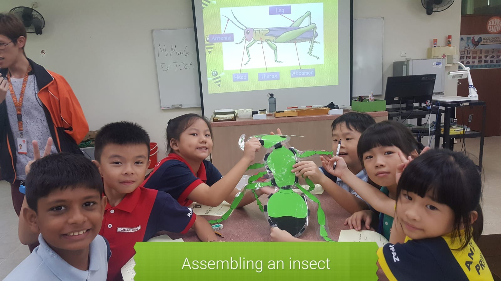 7. LJ_Science Centre_Insect.JPG